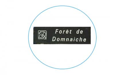 Deal Memo Domnaiche